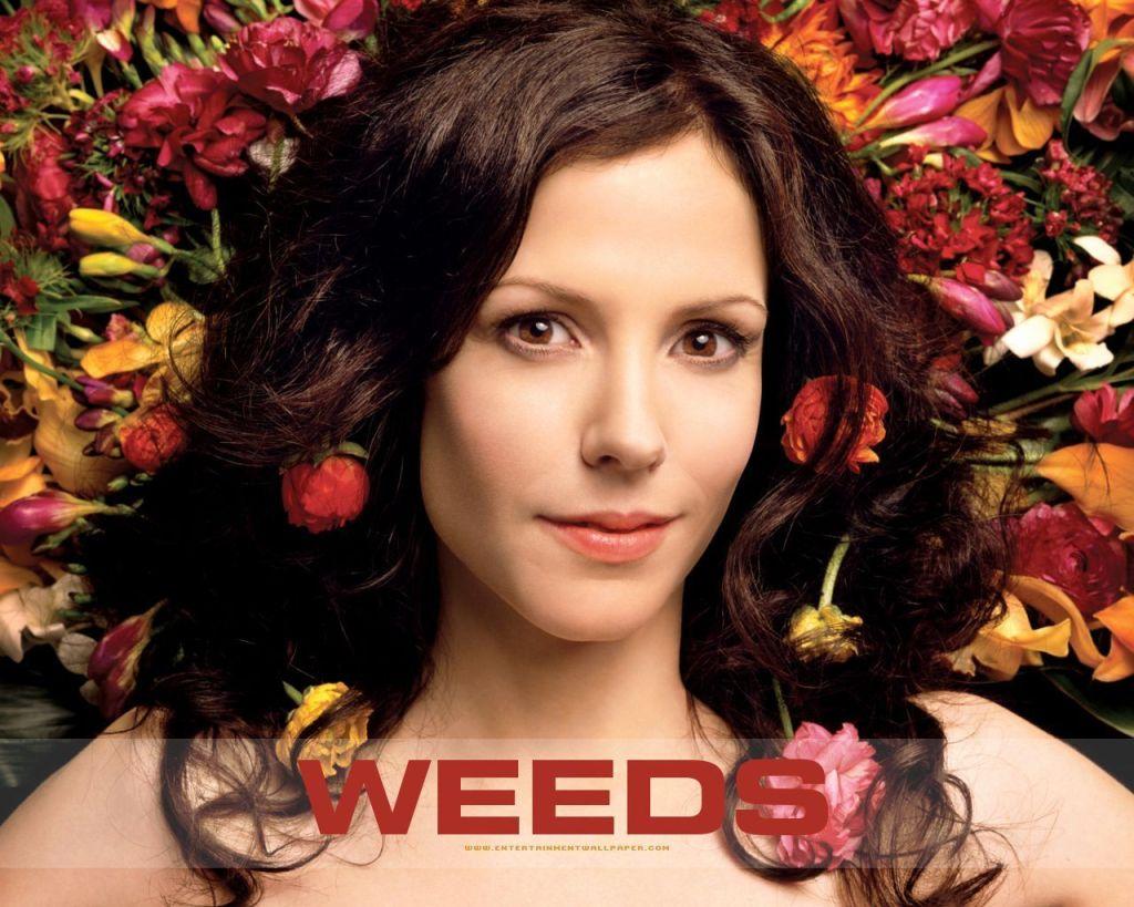 Nancy-Botwin-weeds-11123093-1280-1024
