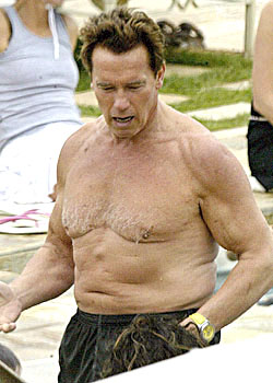 Old Arnold