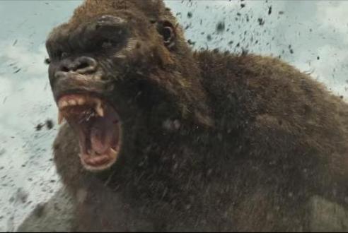 Rage monkey